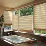 Roman Fabric Pull Down Window Shades in Delray Beach FL